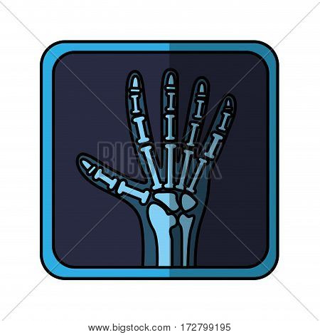 x-rays medical isolated icon vector illustration design