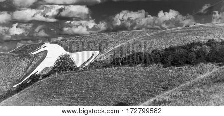 White horse hill while a one of autumn day.Westbury.,England.