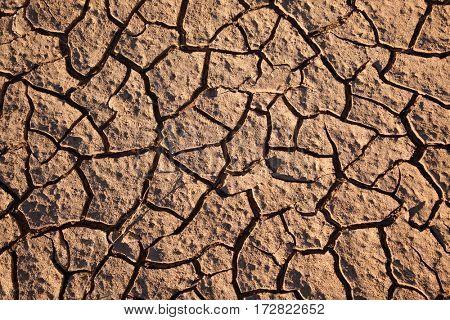 Dry land. cracked brown orange dirt background.Evening sunlight