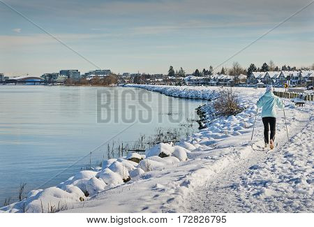 Urban Cross Country Skiing. Cross country skiing along the bank of the Fraser River in Richmond, BC.
