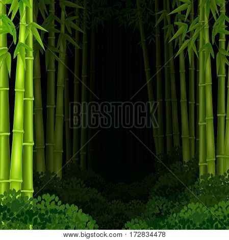 Vector illustration of Background bamboo forest at night