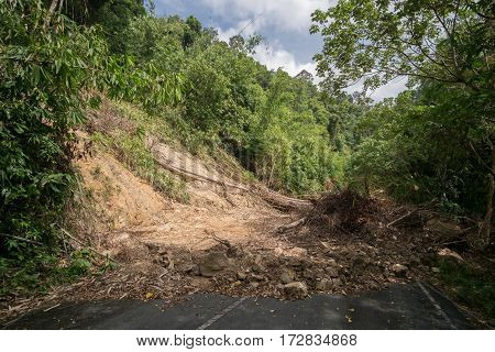 Countryside road covered with mudflow and broken trees