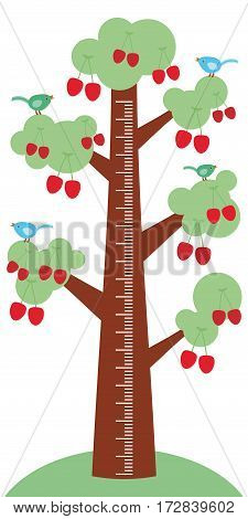 Big tree with green leaves birds and Ripe red cherries on white background Children height meter wall sticker kids measure. Vector illustration