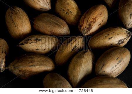 .Pecan Nuts Loose