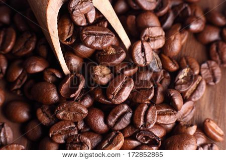 coffe in grains in wooden plate and spoon