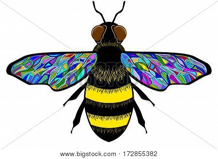 Bee with colorful pattern. Isolated on a white background.