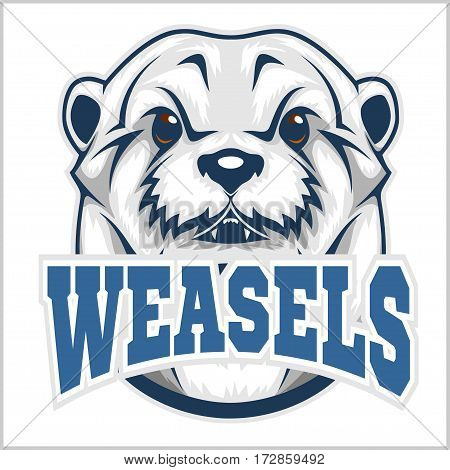 Weasel head isolated on white background. Vector illustration.