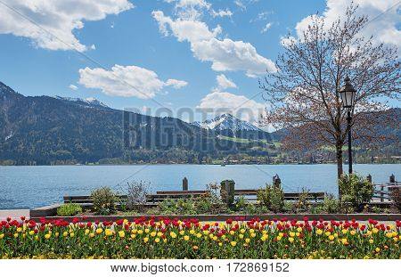 Springlike Flowerbed At Spa Town Tegernsee, Lake Shore With Benches And Mountain View
