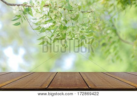 Perspective Wood Table And Nature Background