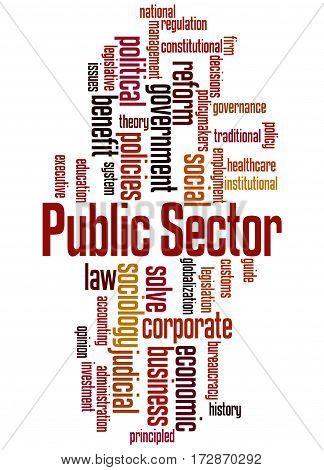 Public Sector, Word Cloud Concept 3