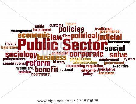 Public Sector, Word Cloud Concept 5