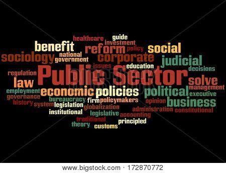 Public Sector, Word Cloud Concept 6