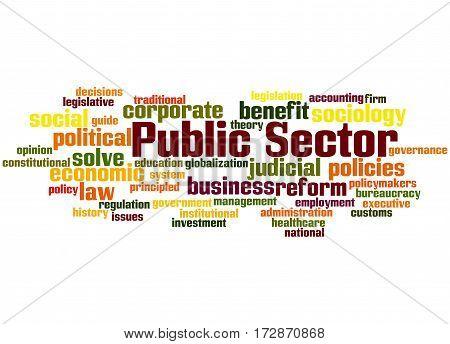 Public Sector, Word Cloud Concept 8