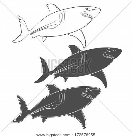 Set of vector illustrations with a great white shark. Isolated objects on a white background.