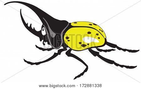 cartoon  giant hercules or rhinoceros beetle male. Vector isolated on white