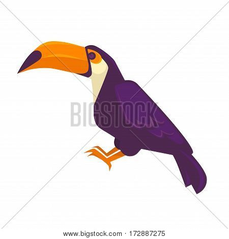 Purple toucan bird with long beak big exotic bird isolated on white. Side view of brightly marked toucan with large bill vector illustration isolated bird icon with dark violet feather in flat design.