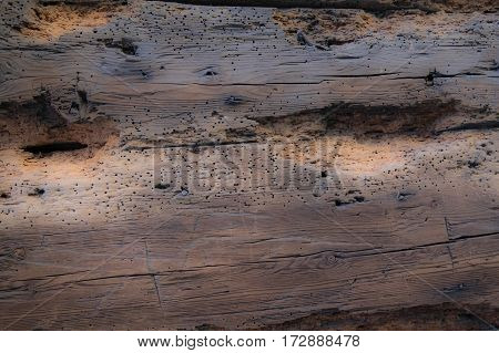 Background. Rustic Wooden Planks With Visible Grain