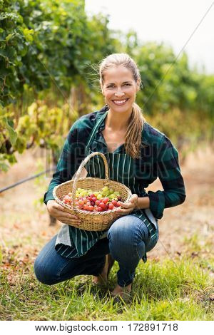 Happy vintner holding a basket of grapes in the vineyard
