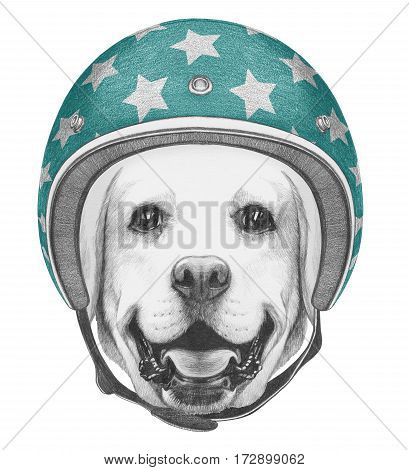 Portrait of Labrador with Helmet. Hand drawn illustration.