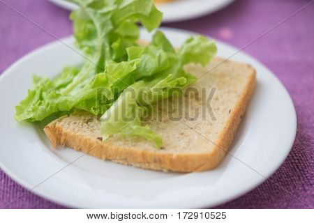 slices of whole grain bread and green oak lettuce on white dish
