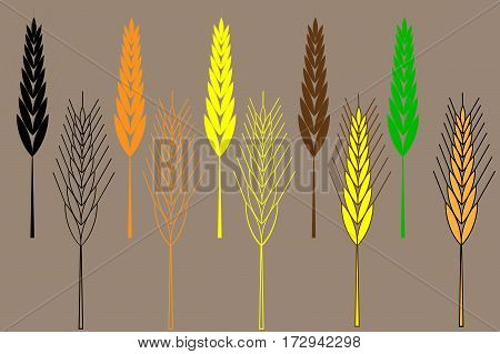 barley ear vector illustration , wheat ear icon set