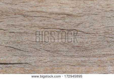 Gray Wooden background grunge wood board .