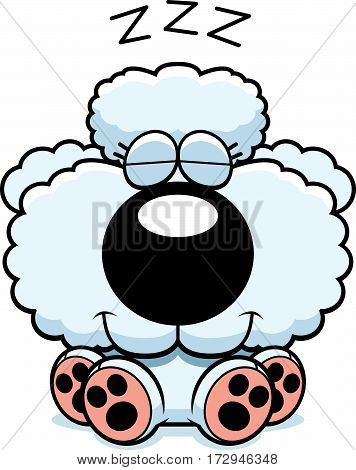 Cartoon Poodle Napping