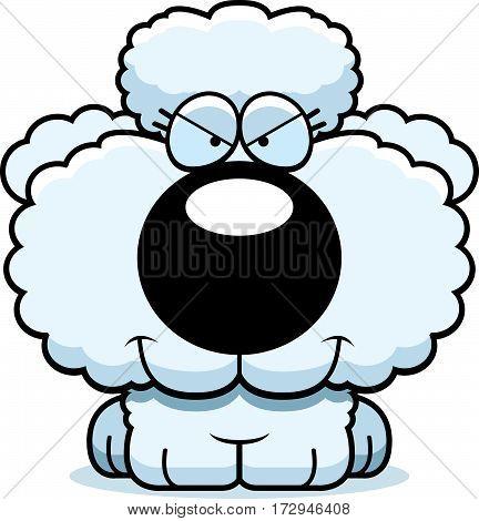 Cartoon Sly Poodle