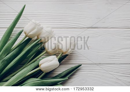 Stylish White Tulips On Rustic Wooden Table Background Top View. Hello Spring Flat Lay. Soft Light,