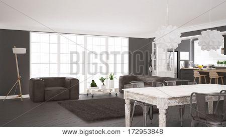 Minimalist White And Gray Living And Kitchen, Scandinavian Classic Interior Design
