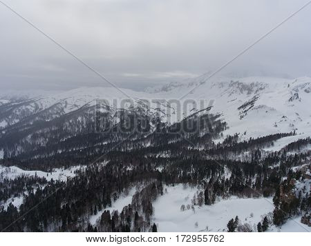 Aerial Landscape Of The Snowy Forest In The Mountains.