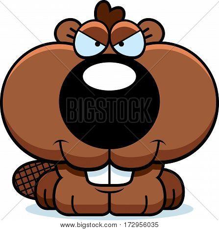 Cartoon Sly Beaver Kit