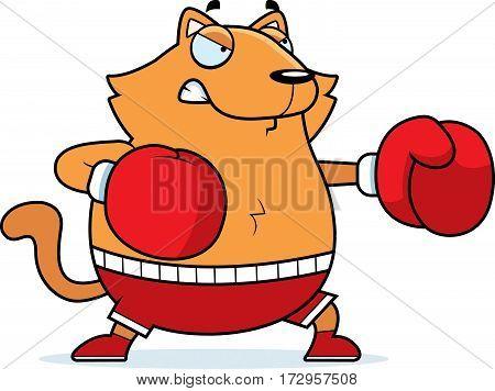 Cartoon Cat Boxing