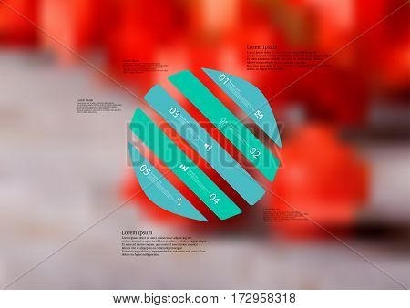 Illustration infographic template with motif of circle askew divided to five green standalone sections. Blurred photo with natural motif of several red physalis blooms is used as background.