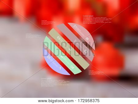 Illustration infographic template with motif of circle askew divided to five color standalone sections. Blurred photo with natural motif of several red physalis blooms is used as background.