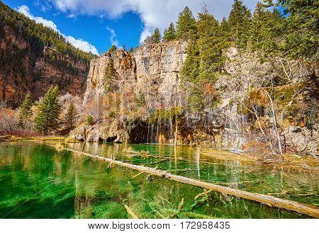 Fallen Tree In Hanging Lake, Colorado, Usa.