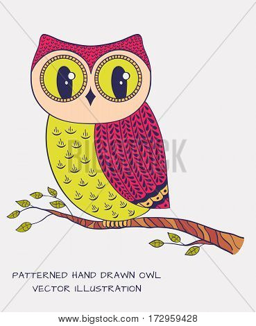 Colorful hand drawn owl isolated on white background. Vector illustration.
