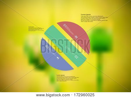 Illustration infographic template with motif of color circle askew divided to three standalone sections. Blurred photo with natural motif of poppy flower is used as background.