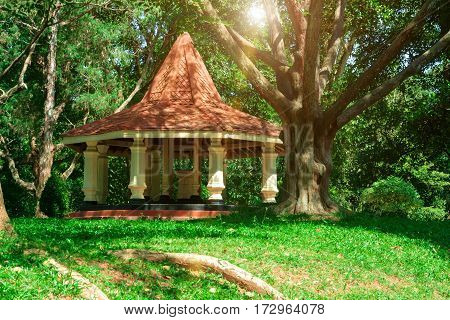 White stone gazebo in a sunny forest is surrounded old trees and green shrubs.