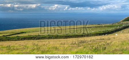North Devon coast. Pastures by the sea. Long fence separates farmland. National park Exmoor. UK