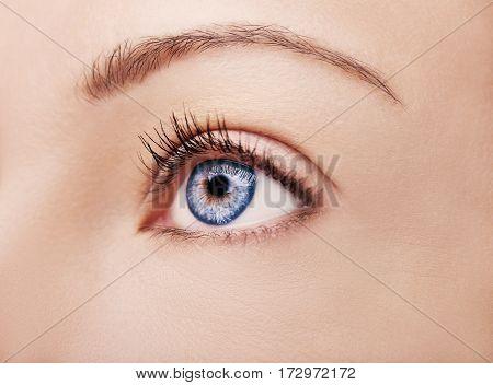 A Beautiful Insightful Look Brown Woman's Eye
