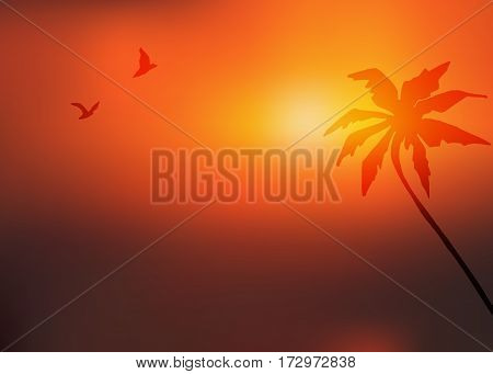 Sunset background with palm tree and two flying birds. Vector blurred landscape