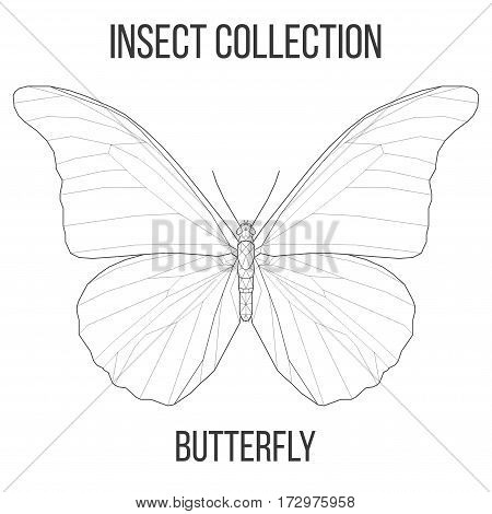 Butterfly insect geometric lines silhouette isolated on white background vintage vector design element illustration