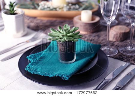 Table served with succulents for dinner