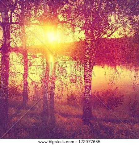Sunset landscape in vintage style.