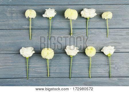 Beautiful Chrysanthemum on gray wooden background