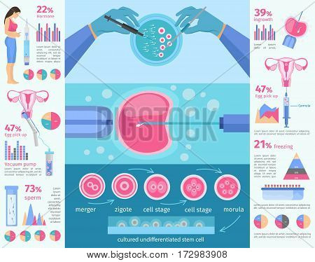 in vitro fertilization flat infographic template with diagrams charts and medical elements of insemination procedure vector illustration
