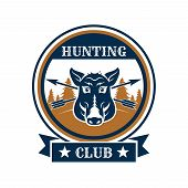 Hunting club emblem with wild boar or aper muzzle. Hunter wildlife adventure vector isolated arrows on blue icon and ribbon or stars with wild hog swine predatory animal in nature poster