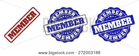 Member Grunge Stamp Seals In Red And Blue Colors. Vector Member Labels With Distress Effect. Graphic