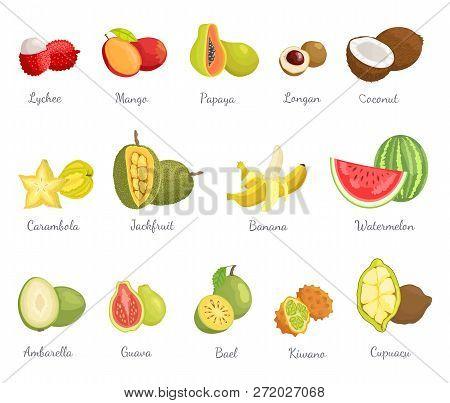 Lychee Mango Fruits Vector & Photo (Free Trial)   Bigstock